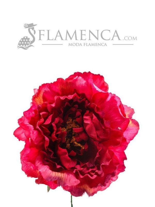 Bougainvillea flamenco flower