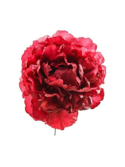 Flamenco flower peony style in carmine color