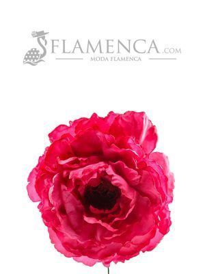 Flamenco raspberry flower