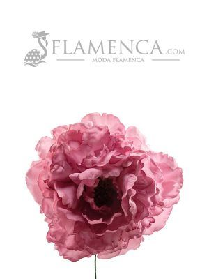 Old mauve flamenco flower