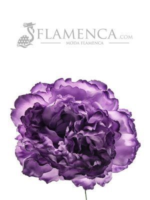 FLOR DE FLAMENCA MORADO