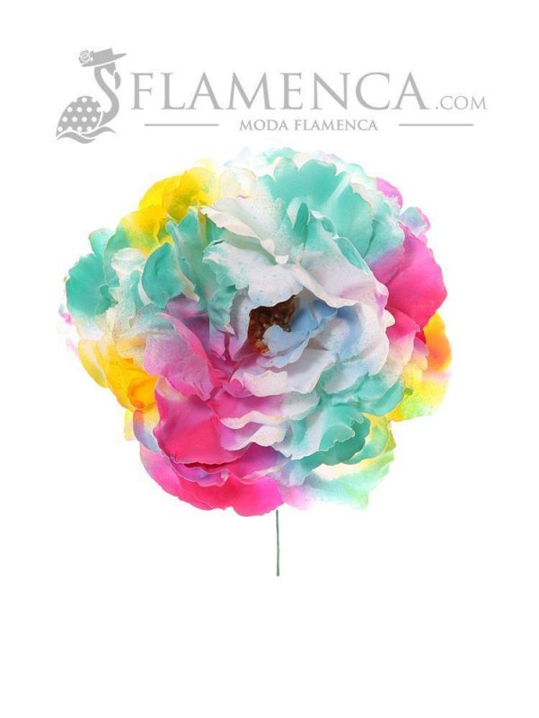 Multicolor flamenco flower