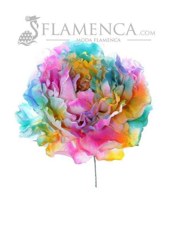 Multicolor flamenco flower