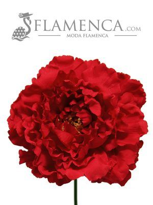 Red flamenco flower