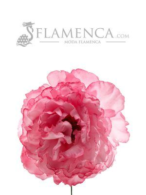 FLOR DE FLAMENCA ROSA CHICLE