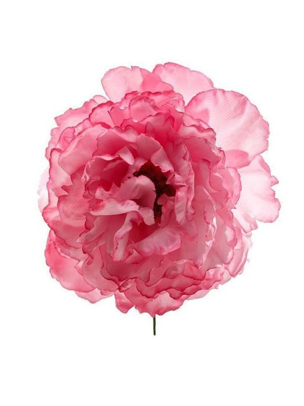 Flor de flamenca rosa chicle