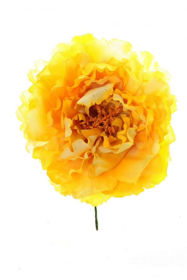 Flor peonia amarillo