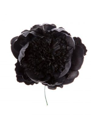 Peonia rizada color negro