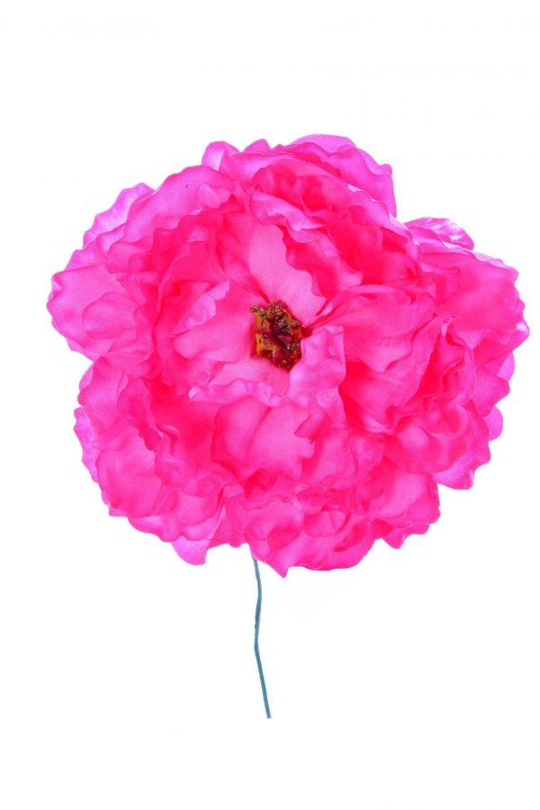 Peonia de flamenca rosa chicle