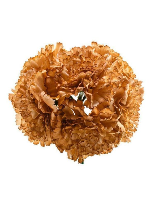 Bouquet of camel carnations