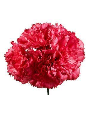 Bouquet of carmine carnations