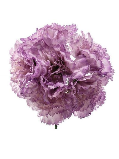 Bouquet of mauve carnations