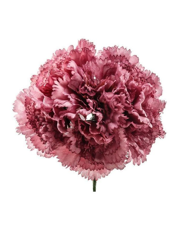 Bouquet of carnations in old mauve