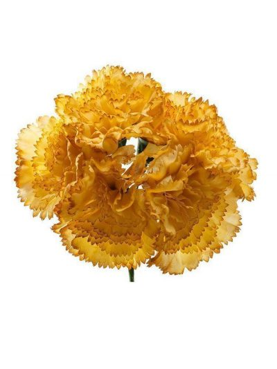 Bouquet of mustard carnations