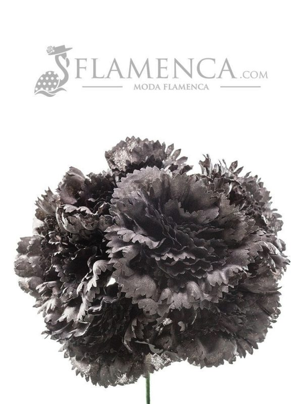 Bouquet of black carnations