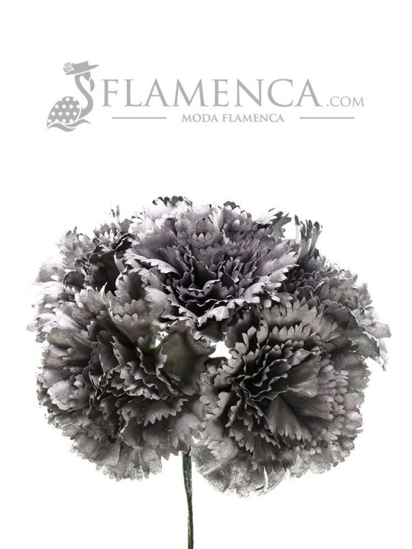 Bouquet of silver carnations