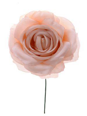 Rosa de flamenca color crema
