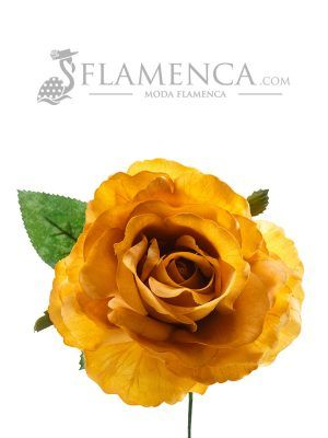 Flamenco rose in mustard