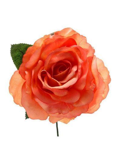 Rosa de flamenca naranja pálido