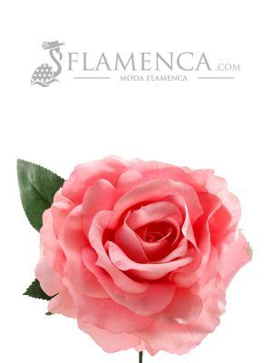 ROSA DE FLAMENCA ROSA CHICLE